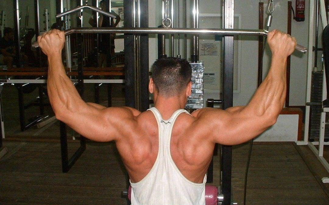 Avanza muscularmente, ciclos de entrenamiento.