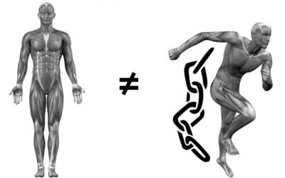 Entrenamiento funcional: La integración estructural